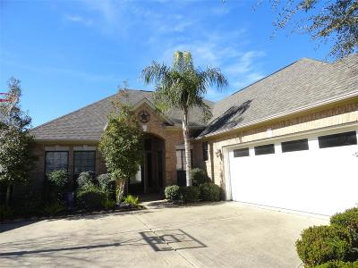 Sugar Land Single Family Home For Sale: 606 Overdell Drive
