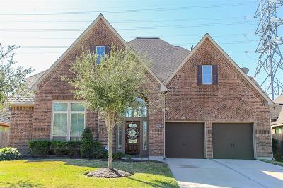 Pearland Single Family Home For Sale: 13706 Mooring Pointe Drive