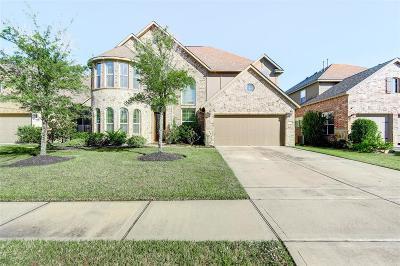 Single Family Home For Sale: 8738 Osiris Core Lane