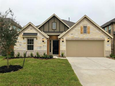 Spring Single Family Home For Sale: 4641 Autumn Morning Drive