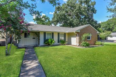 Houston Single Family Home For Sale: 4802 Kingfisher Drive