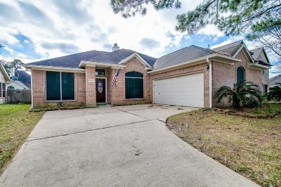 Single Family Home For Sale: 2419 Blue Shadow Drive