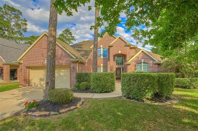 The Woodlands Single Family Home For Sale: 27 S Oriel Oaks Circle