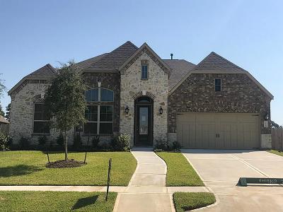 Single Family Home For Sale: 18102 Calavatra Lane