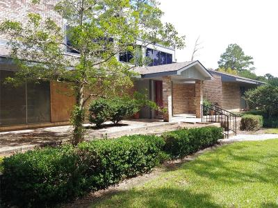 Friendswood Single Family Home For Sale: 5 Haverford Lane