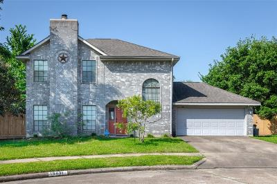 Katy Single Family Home For Sale: 19431 Bristlestar Drive