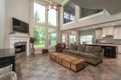 Tomball Single Family Home For Sale: 11003 N Country Club Green Drive