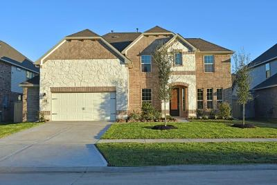 Sugar Land Single Family Home For Sale: 6215 Calico Pointe Court