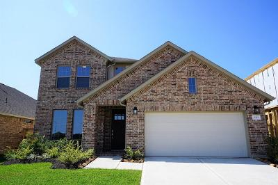 Tomball Single Family Home For Sale: 21715 Rose Maris Lane