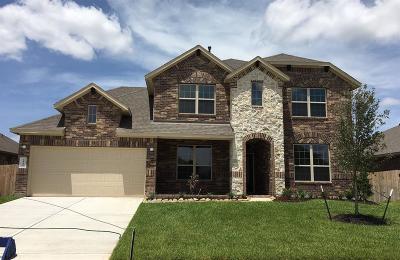 Katy Single Family Home For Sale: 4839 Tuscany Farm Drive