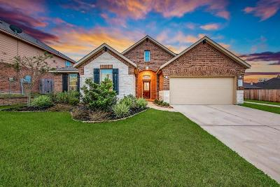 Conroe Single Family Home For Sale: 906 Holly Crossing Drive