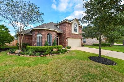 Tomball Single Family Home For Sale: 17606 Ginger Ridge Lane