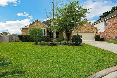 The Woodlands Single Family Home For Sale: 131 Prairie Dawn Circle