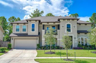 Houston Single Family Home For Sale: 14722 Somerset Horizon Lane