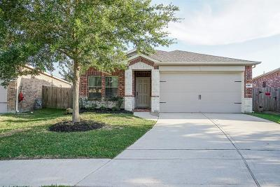 Katy Single Family Home For Sale: 23907 N Newport Bend Circle