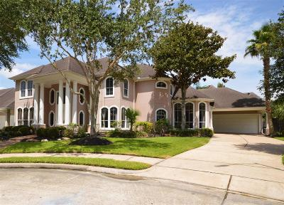 Houston Single Family Home For Sale: 3111 Long Bay Court
