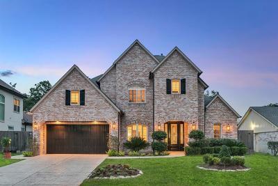 Houston Single Family Home For Sale: 14006 Kingsride Lane