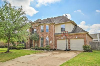 Galveston County, Harris County Single Family Home For Sale: 20927 Twisted Leaf Drive