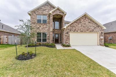 Texas City Single Family Home For Sale: 3413 Fawnwood Drive