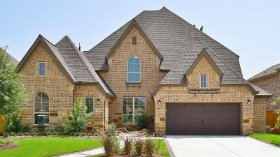 Katy Single Family Home For Sale: 6423 Hedge Sparrow Lane