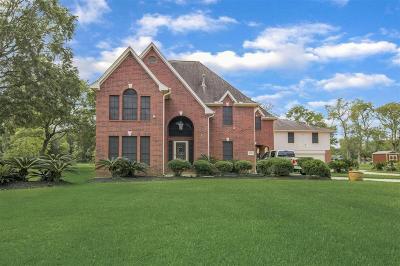 Baytown Single Family Home For Sale: 2902 Landmark Drive