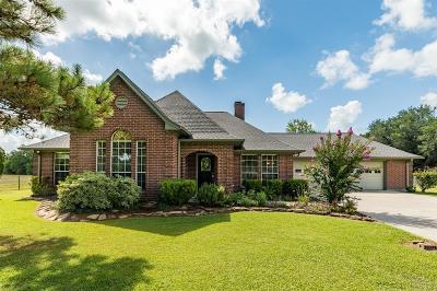 Manvel Single Family Home For Sale: 251 Ridge Road
