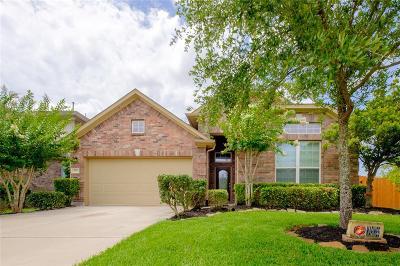 Missouri City Single Family Home For Sale: 6319 Bain Drive