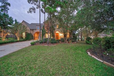 The Woodlands Single Family Home For Sale: 31 Solebrook Path