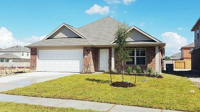 Houston Single Family Home For Sale: 9215 Chloe