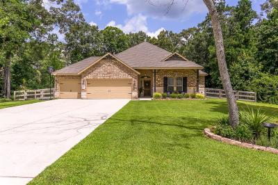 Conroe Single Family Home For Sale: 9162 Silver Back Trl