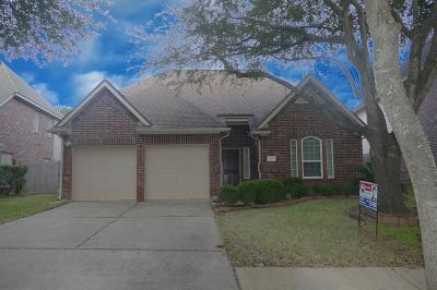 Sugar Land Single Family Home For Sale: 3155 Waters View Drive