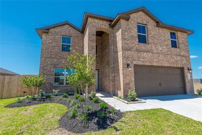 Rosenberg Single Family Home For Sale: 8714 Jamison Drive