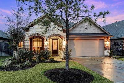 Single Family Home For Sale: 20034 Alyssa Meadows Lane