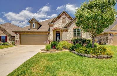 Willis Single Family Home For Sale: 5438 Zephyr Ln