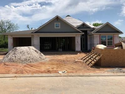 Montgomery Single Family Home For Sale: 164 Racetrack Lane