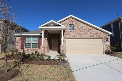 Alvin Single Family Home For Sale: 1246 Steed Bluff Drive