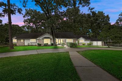Tomball Single Family Home For Sale: 9502 Rolling Oaks Drive