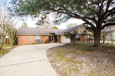 Houston Single Family Home For Sale: 15542 Stoney Fork Drive