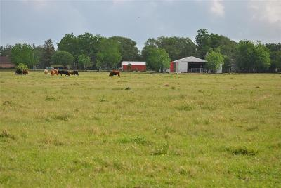Brazoria Residential Lots & Land For Sale: County Road 416