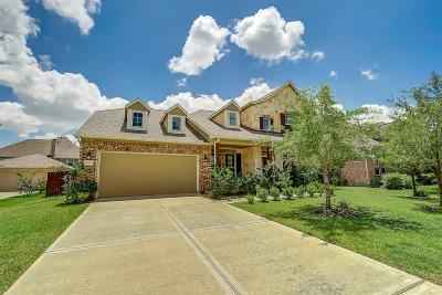 Pearland Single Family Home For Sale: 3007 Decker Field Lane