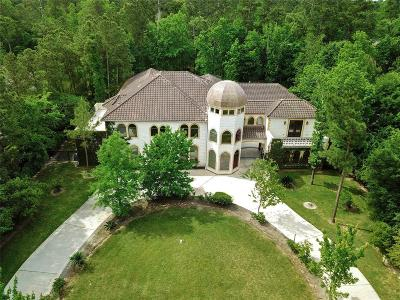 The Woodlands Single Family Home For Sale: 38 W Bracebridge Circle