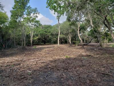 Brazoria Residential Lots & Land For Sale: 6410 Cuarto