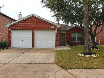 Houston Single Family Home For Sale: 10402 Marble Crest Drive