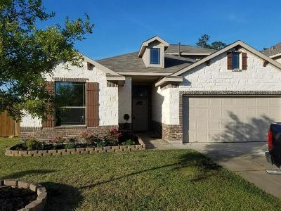 Single Family Home For Sale: 103 S Ridge Park Drive