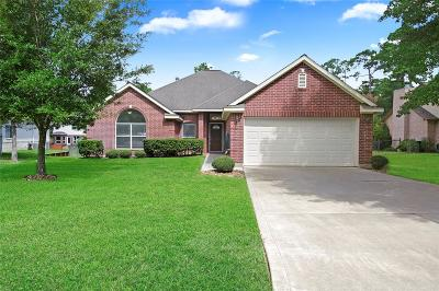 Montgomery Single Family Home For Sale: 3135 Hemingway Drive
