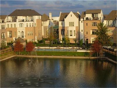 Houston Single Family Home For Sale: 2031 Fannin Station N