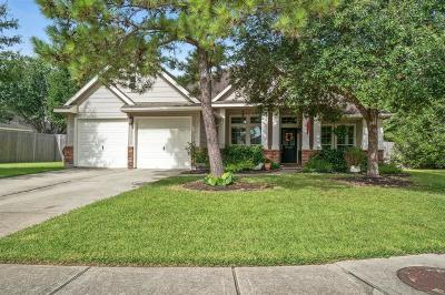 Houston Single Family Home For Sale: 13903 Shasta Leaf Court