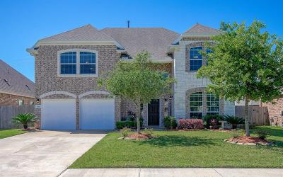 Dickinson Single Family Home For Sale: 1744 Coral Cliff Drive