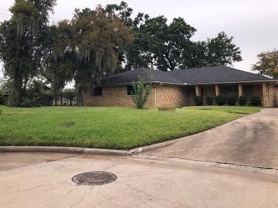 Houston Single Family Home For Sale: 7903 Glen Dell Court