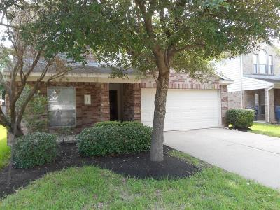 Katy Single Family Home For Sale: 3231 Amber Meadow Drive